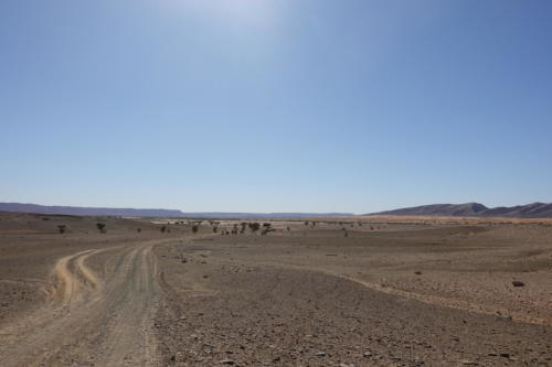 MBA-2020: Merzouga to Tagounite (part 1)